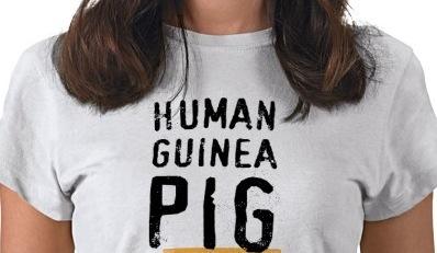 ginea-pig